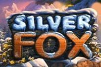 Автомат Silver Fox в клубе Супер Слотс: