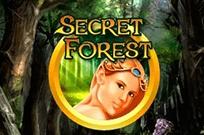 Secret Forest в клубе Супер Слотс